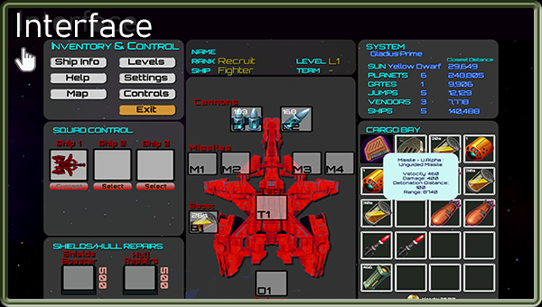 Space Pilot Interface